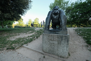 Gorilla - A walk in Crystal Palace | by The-E