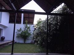 #dawn #doors #walls  #boganvilla #homeawayfromhome #ishayogacenter #coimbatore