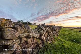 Drystone wall High Galligill