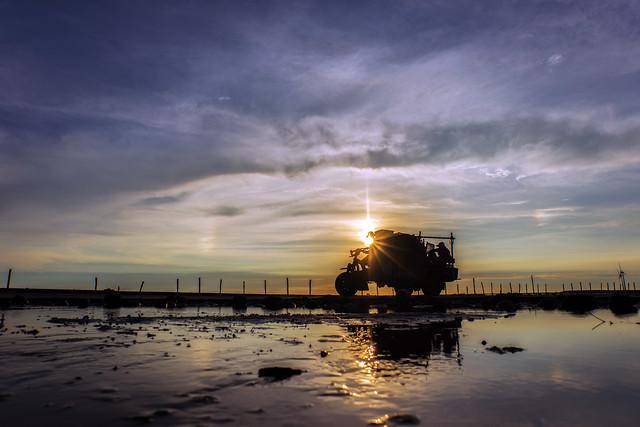 福寶濕地 蚵車