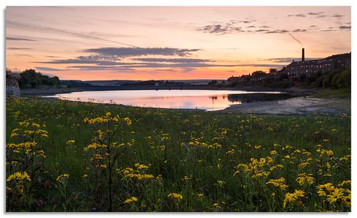 leeming leemingreservoir wildflowers yorkshire reservoir d600 2018 ngc nikkor1635mmf4 sunset