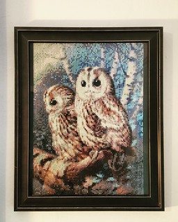 Snowy Owls Diamond Painting | by Christy @ Raining Crafts & Dogs