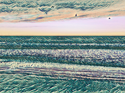digitalart bird seagull gull black blue mauve green brown purple newzealand nz southisland canterbury christchurch ocean pacific sea surf waves northnewbrighton texture