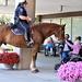 Mounted Patrol Visit