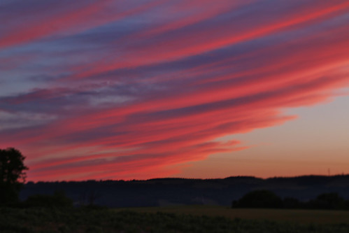clouds sunset blues reds orange tree horizon evening field long colorful odd clear