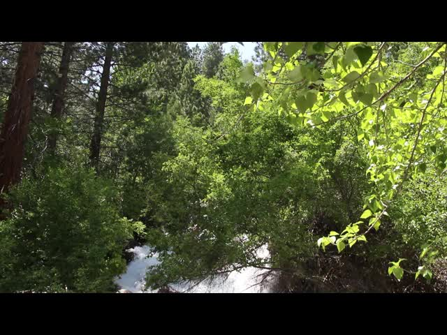 0109 Video of North Fork Big Pine Creek at First Falls