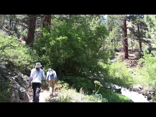 0122 Video of 1st Falls on the North Fork of Big Pine Creek