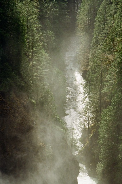Wallace River Mist