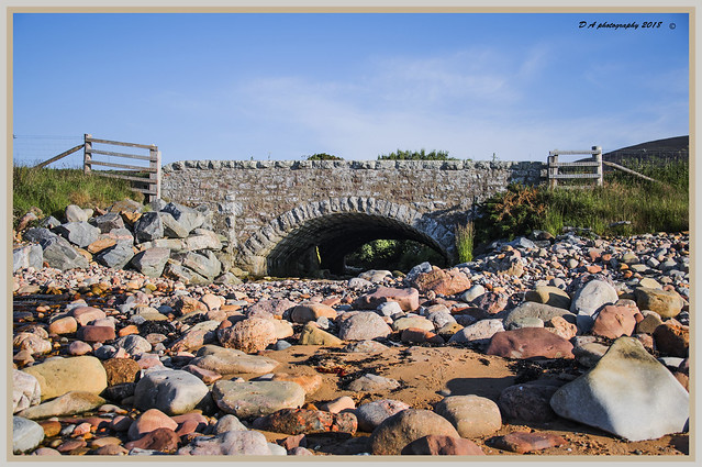 Bridge DSC_1619