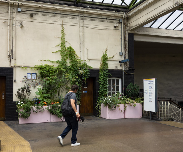 Floral Display, Edgware Road Station