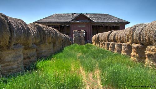 Hay, Its a School