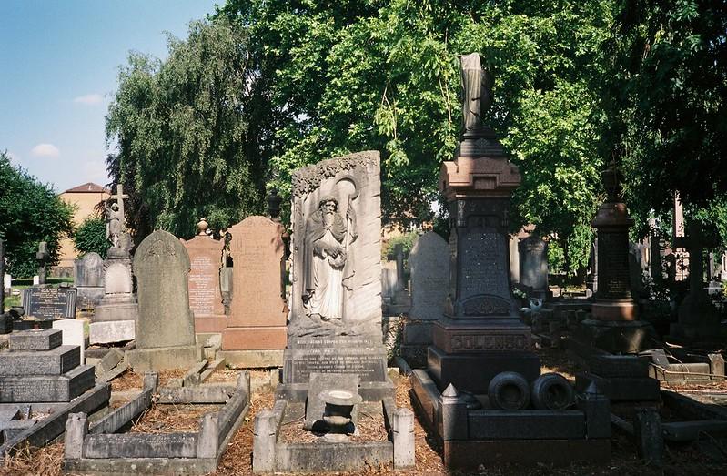 The druid grave, Avonview