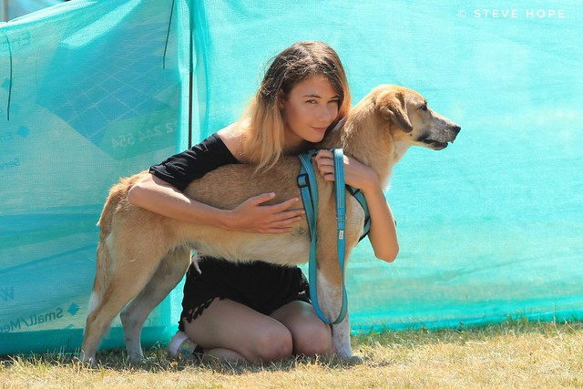 Jerry Green dog rescue summer show 2018