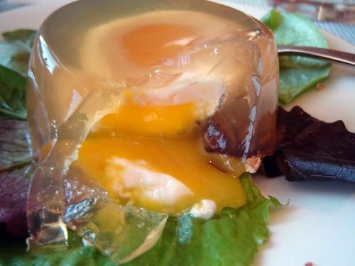 Egg in Aspic