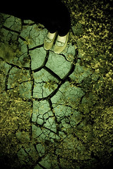 Cracks of the Earth   by Andrew Hefter