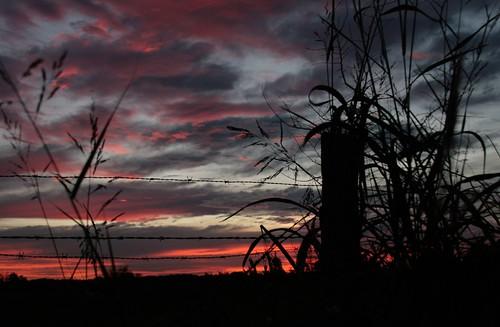 autumn nature sunrise louisiana mrgreenjeans gaylon autumnmorning centralla sunriseonjoorrd gaylonkeeling