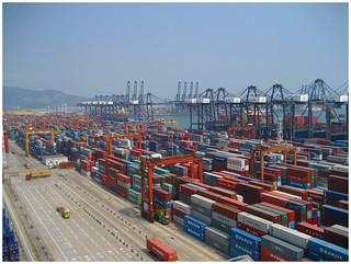 Shenzhen Container Port   by Bert van Dijk