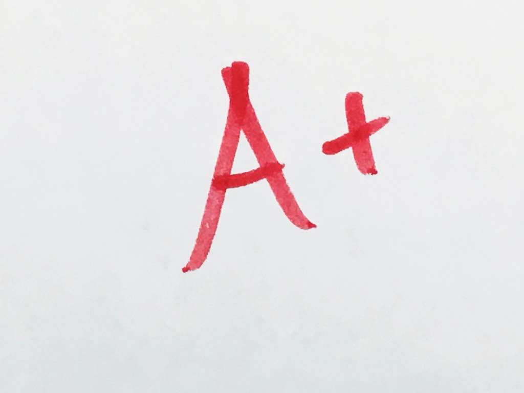 Image result for a+ grades