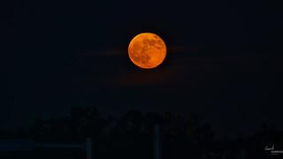 Moonrise of Full (strawberry) moon - June 2018