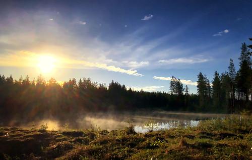 finland finlandnorway birding holiday kuusamo northernostrobothnia fi mist sunrise water