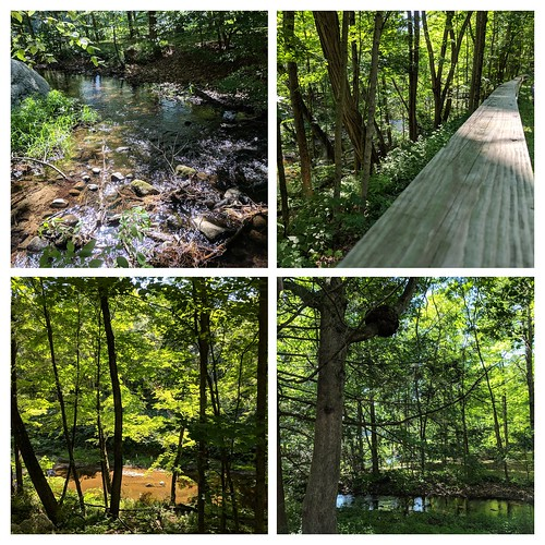 Mill River Greenway Walk | by Dogtrax