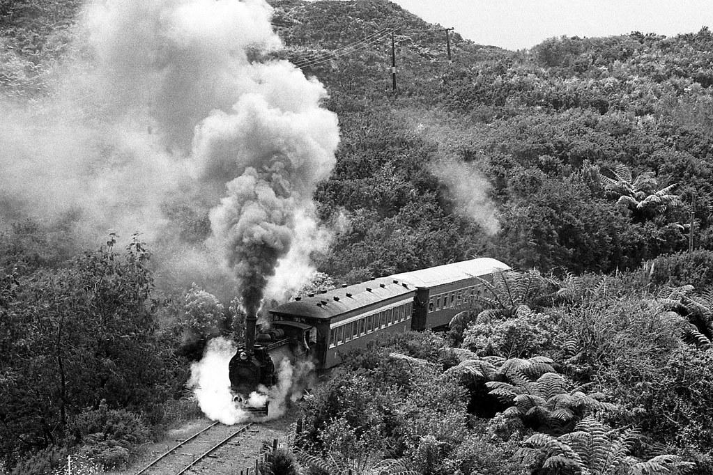 NZR Locomotive F 185 working hard