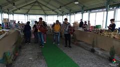 Mercado dos  Saberes, Sabores e Tradições