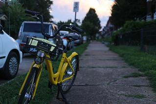 OFO Bike   by pasa47