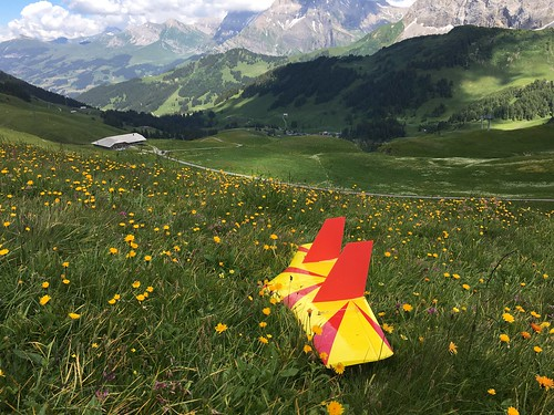 Hahnenmoos 22.-23.06.2018 | by flying4nature