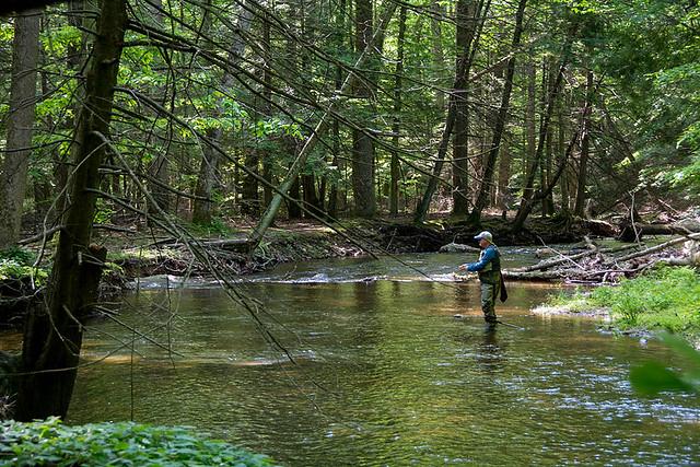 Photo of man fishing in stream