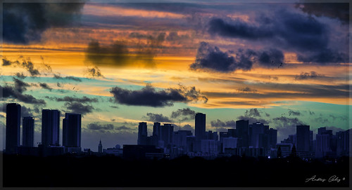 downtownmiami earlyinthemorning early sunrise cityscapes miamicity exploration colors clouds urban architecture building
