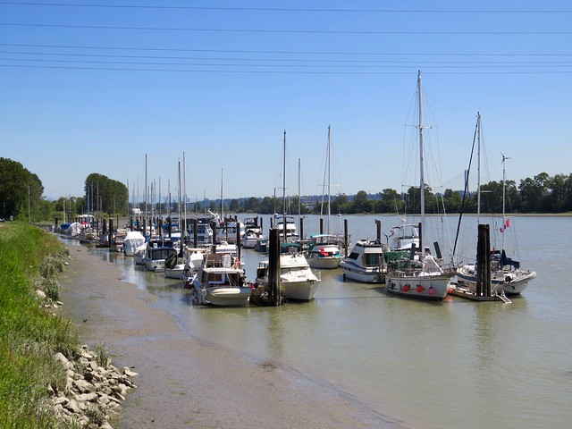 Fraser River Marina