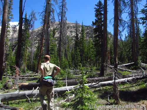 Striking off-trail to climb Mt. Agassiz in the Uinta Mountains of Utah