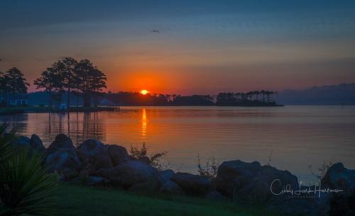 sunrise orientalnc northcarolina orange