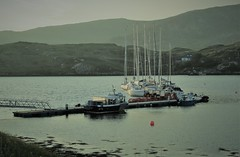 mast-er-full marina...
