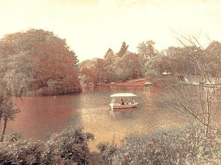 LAKE #artisticphoto #landscape #lake #painter #painters #art