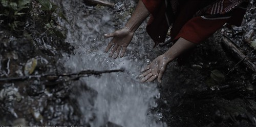 reel cinematografia documental cinematographer colombia david horacio montoya davidhoracio.com 34