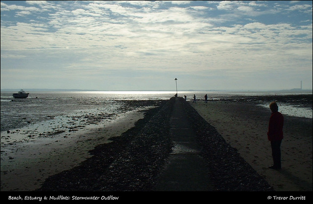 Beach, Estuary & Mudflats: Stormwater Outflow DSCF0044