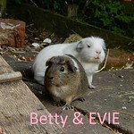 Betty & evie