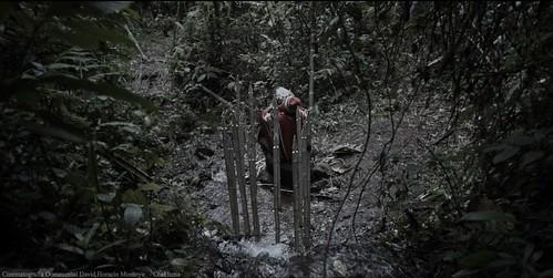 reel cinematografia documental cinematographer colombia david horacio montoya davidhoracio.com 37