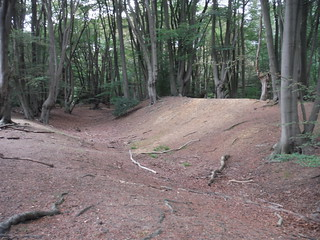 Ambresbury Banks Iron Age Hillfort Remains SWC Walk 259 - Epping Forest Centenary Walk: Manor Park to Epping