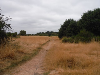 Path through Wanstead Flats SWC Walk 259 - Epping Forest Centenary Walk: Manor Park to Epping