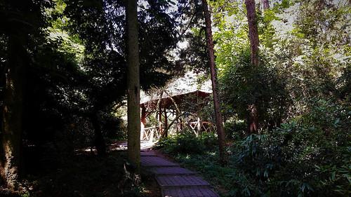 Ház az erdő mélyén (Szarvasi arborétum)