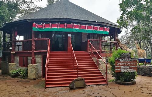 giraffe-centre-kenya-visit | by quirkytravelguy