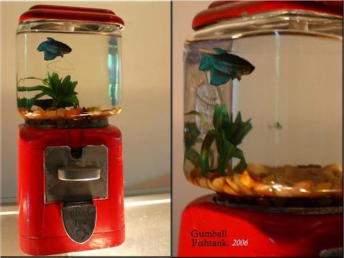 Gumball Fishtank. | by eyewashdesign: A. Golden