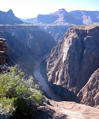 Colorado River from Plateau Point lookout