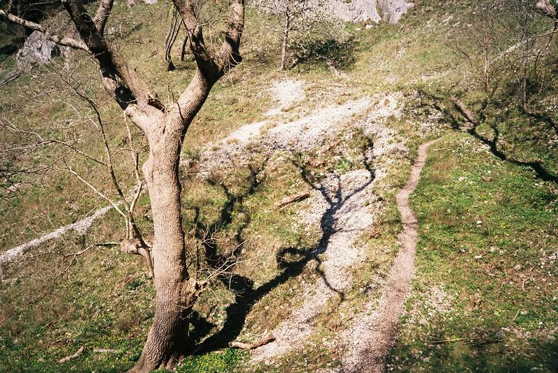 Goat Gully shadows