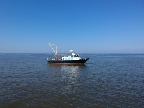 Photo of Maryland Department of Natural Resources monitoring vessel in the Chesapeake Bay
