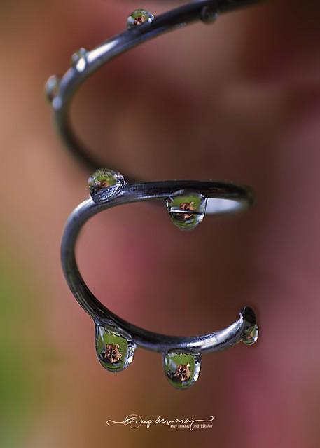 Water drops..