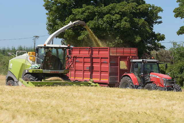 Claas Jaguar 870 SPFH filling a Broughan Engineering Mega HiSpeed Trailer drawn by a Massey Ferguson 7618 Tractor